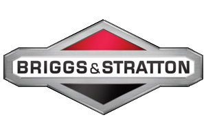 shop online buy Briggs & Stratton small engine parts Hagemeister Enterprises Inc